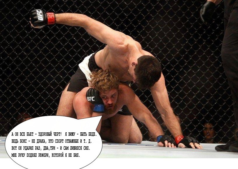 the legalization of mixed martial arts